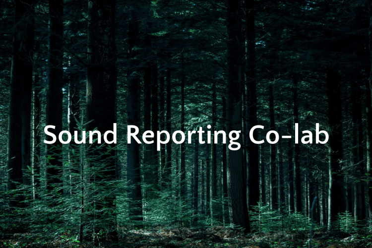 Sound Reporting Co-lab
