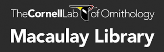 Macaulay Library logo